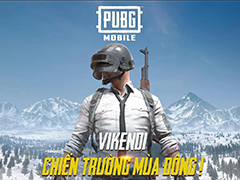 Download and Play PUBG Mobile VN by VNG on PC